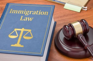 Visa & Immigration Law